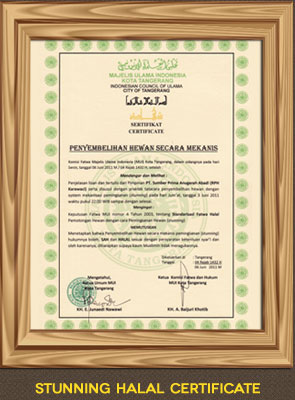 Stunning Halal Certificate