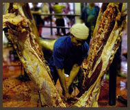 Splitting Carcase