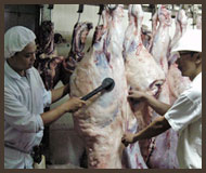 Weigh & Stamp